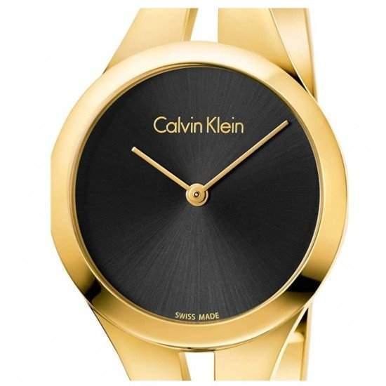 Ceas Dama CALVIN KLEIN Model Addict K7W2M511
